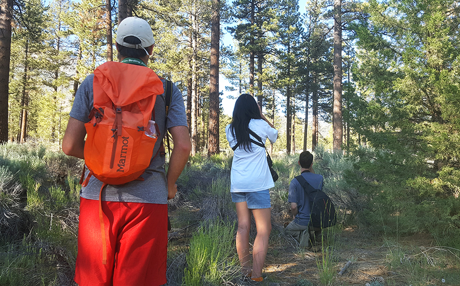 These teens are passionate, serious birders. We spent two days camping and hiking with them through the San Bernardino National Forest.