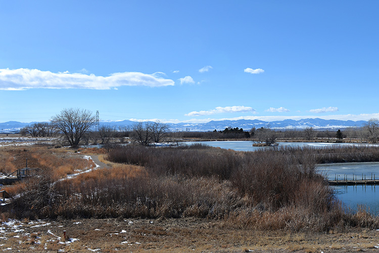 The Rocky Mountain Arsenal National Wildlife Refuge