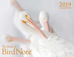 2019 calendar American White Pelicans
