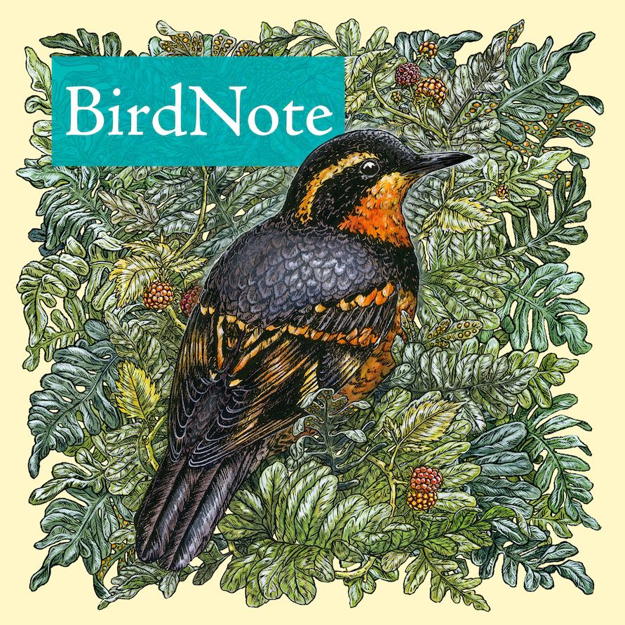 BirdNote's Daily Podcast