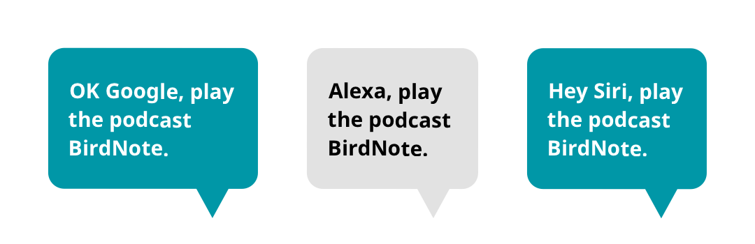 "Bubbles showing commands for smart speakers: ""OK Google, play the podcast BirdNote."" ""Alexa, play the podcast BirdNote."" ""Hey Siri, play the podcast BirdNote."""