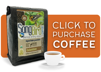 Song Bird Coffee
