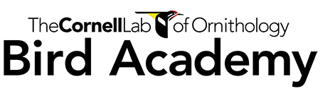 The Cornell Lab of Ornithology Bird Academy