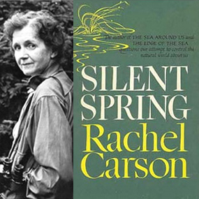 50th Anniversary of Silent Spring | BirdNote