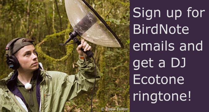 Sign up for BirdNote emails and get a DJ Ecotone ringtone!
