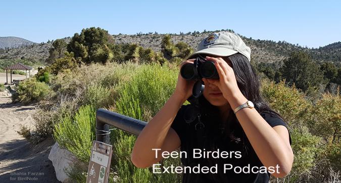 teen birder