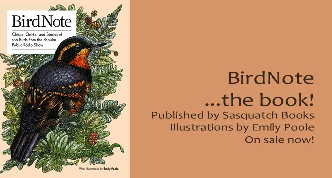 Varied Thrush Emily Poole BirdNote book