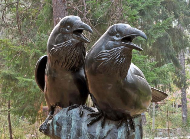 Tony Angell's bronze Common Ravens