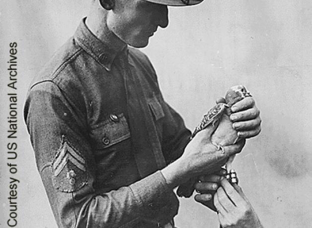 Soldier with carrier pigeon