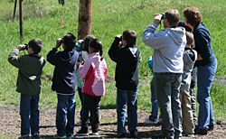 young birders in the field